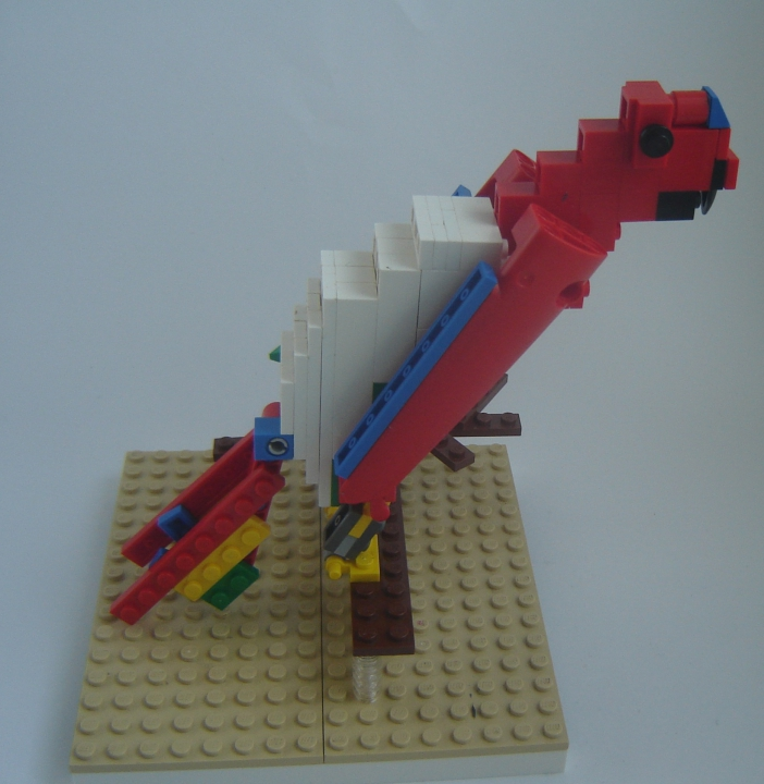LEGO MOC - 16x16: Animals - Red-and-green Macaw: Вид с боку.